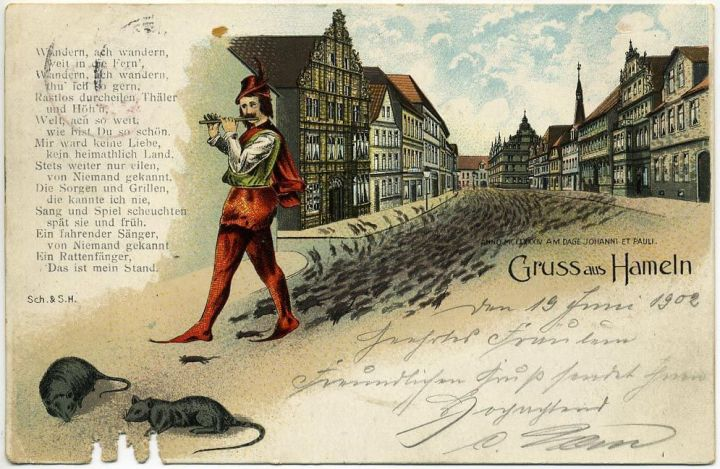 The Pied Piper lured the rats of medieval Hamelin, Germany, to their deaths with an alluring tune. Modern ratcatchers use forced birth control, which is less poetic but apparently more effective. Illustration courtesy Dage Johanni et Pauli Sch. & S.H., courtesy Wikimedia. Public domain
