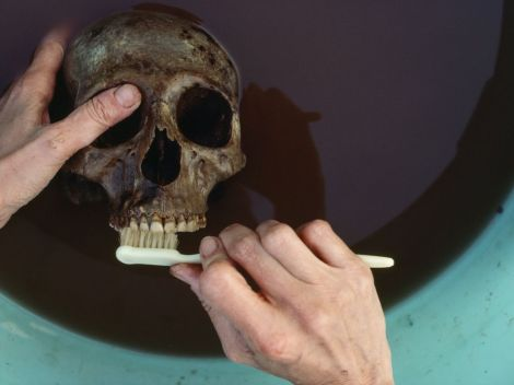 herculaneum-skull