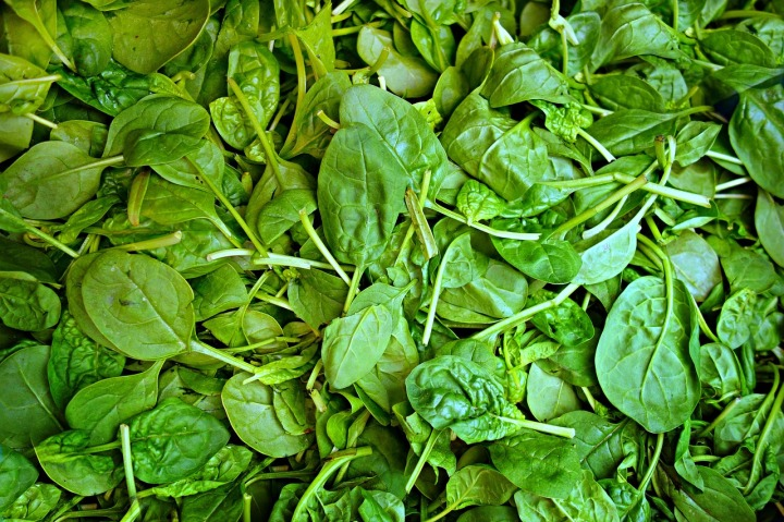 Spinach really is a superfood. Photograph by MabelAmber, courtesy Pixabay. Public domain