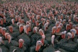 A raft of turkeys gobble on an Arkansas farm in 1988. Photograph by James R. Root, National Geographic