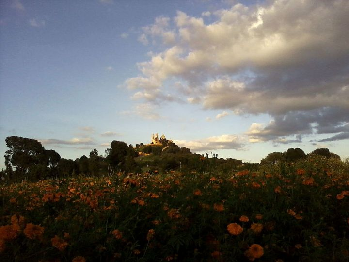 The enormous Great Pyramid of Cholula stretches 400 by 400 meters (1,300 by 1,300 feet) across and 55 meters (180 feet) above this marigold-dotted Mexican plain. Archaeologists think the pyramid was built to honor the Olmec god Quetzalcoatl, but like most ancient structures, it has a Catholic church on top of it now. Photograph by Emgalindo, courtesy Wikimedia. CC-BY-SA-3.0