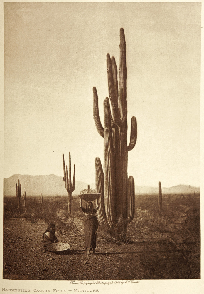 The Tohono O'odham Nation sits on 119 kilometers (74 miles) of the U.S.-Mexico border. Photograph by Edward S. Curtis, National Geographic