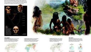 Did Neanderthals Build Stone Circles? – National Geographic